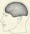 Cognitive Neuroeducation (CNE)_Program Conductor's Instruction Manual