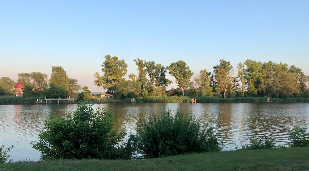 Zu sehen ist ein Fluss, die Oder. Davor noch ein Stück grüne Wiese und Büsche, auf der anderen Oferseite ein Haus, mehrere Stege, Bäume und der blaue Himmel. Die andere Uferseite wird noch vom der untergehenden Sonne beschienen.