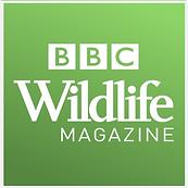BBC-Wildlife Magazine-square logo.png