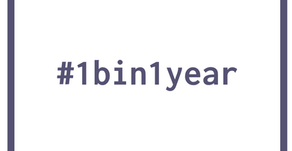 What is #1bin1year?