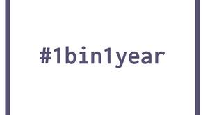 What is #1bin1year?