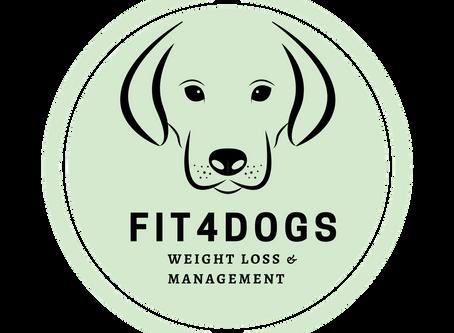 How can i keep my dog trim & healthy.