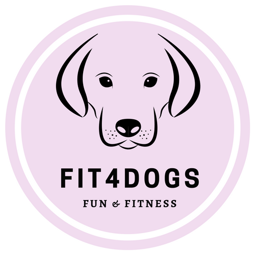 Fun & Fitness package | fit4dogsuk