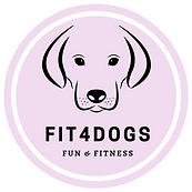 fit4dogs, fun, fitnes, swimig,
