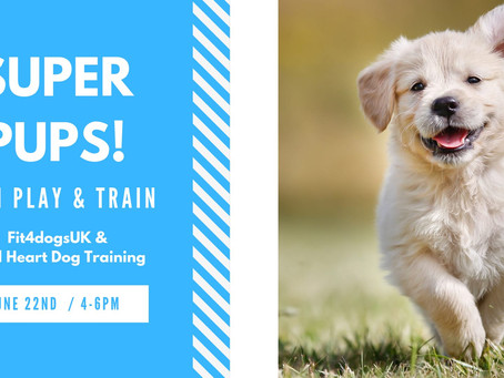Would you like to have a Super PUP?