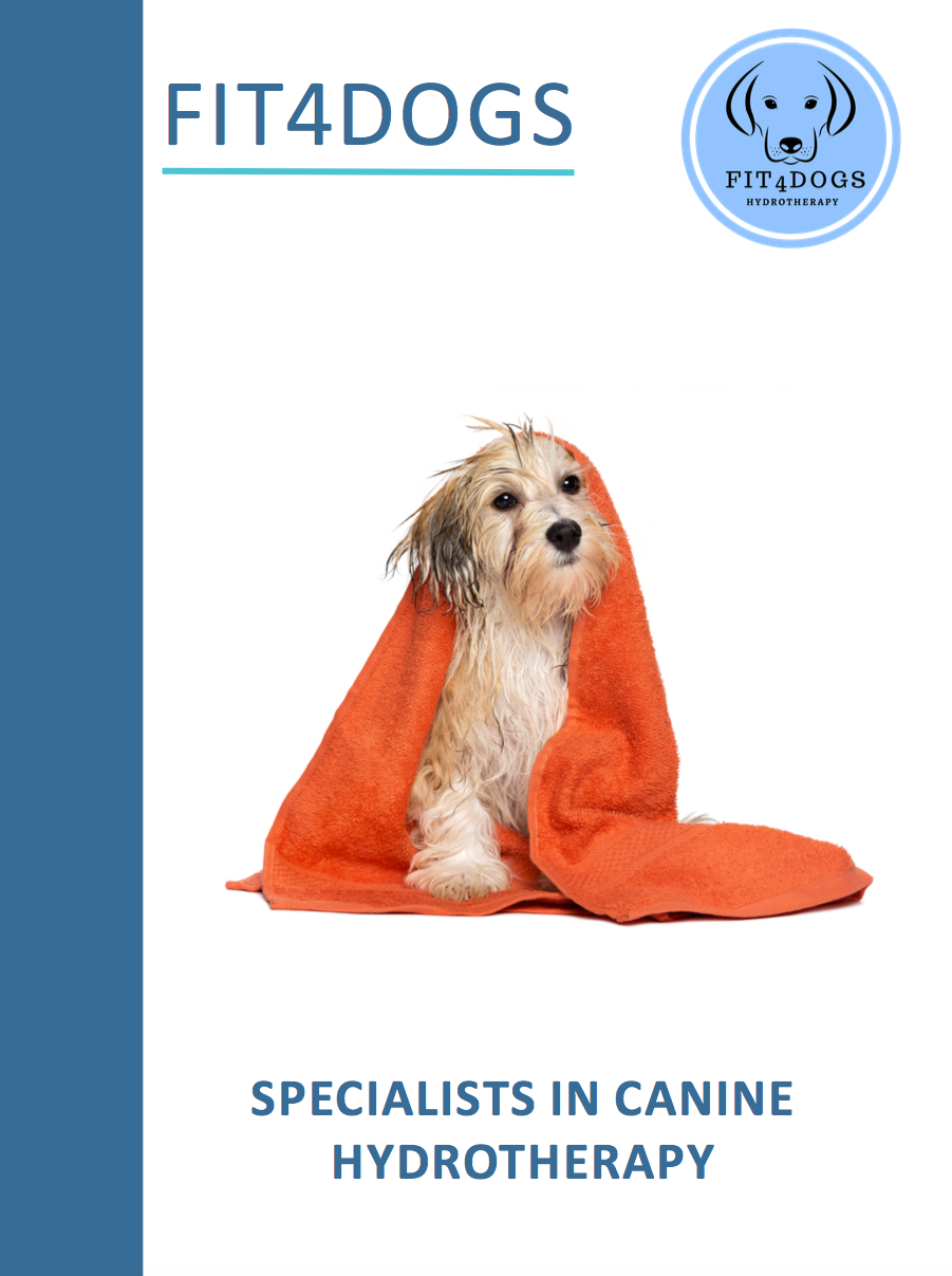 fit4dogsuk ebook Canine Hydrotherapy Beverley