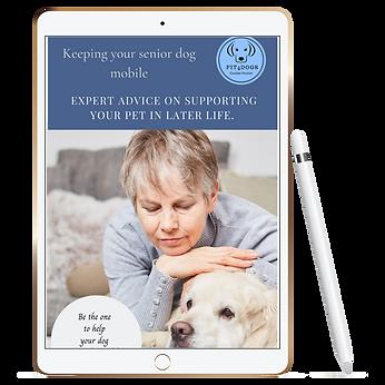 Free ebook Senior dog support.png