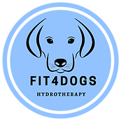 fit4dogs, Canine, Hydrotherapy, Dog swimming, England.
