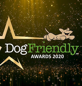 Dogfrienldy Awaards 2020 Top 3 Fit4dogsu