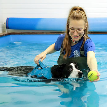 Fit4dogsuk Fran in the Canine Swimming p