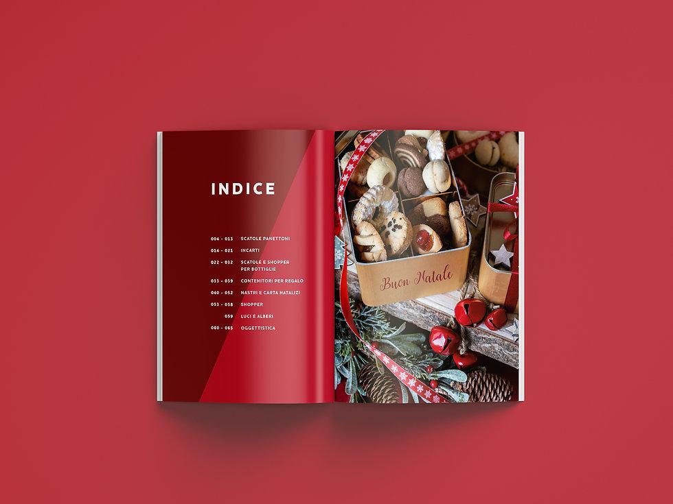 Cat Natale Incartare 19_Indice_color.jpg