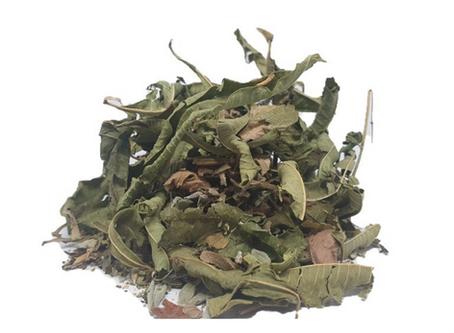 הטיפול הטבעי במתח וחרדה בעזרת חליטת צמחי מרפא מערביים
