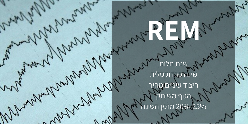 שנת REM, rapid eye movement, שנת חלום, שינה רדוקסלית