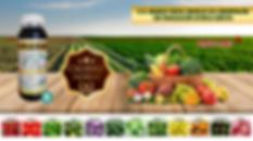 nutrientes web eco.png