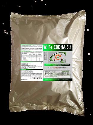 W. FE EDDHA 5.1 01042021.png