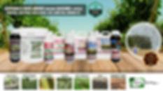 especiales web 04082020.jpg