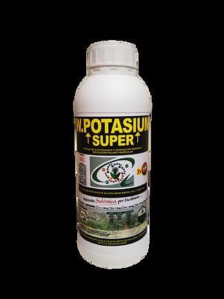 1 litro Super TNM.png