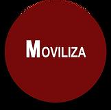 MOVILIZA ESFERA.png