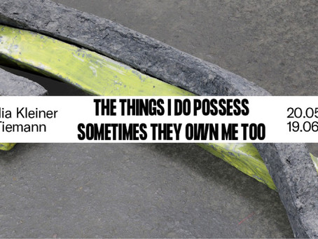 UPCOMING : THE THINGS I DO POSSESS SOMETIMES THEY OWN ME TOO