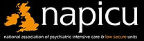 Napicu logo.jpg
