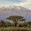 Thumbnail: Tanzania Kilimanjaro PB