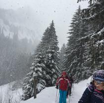 raquettes sous la neige