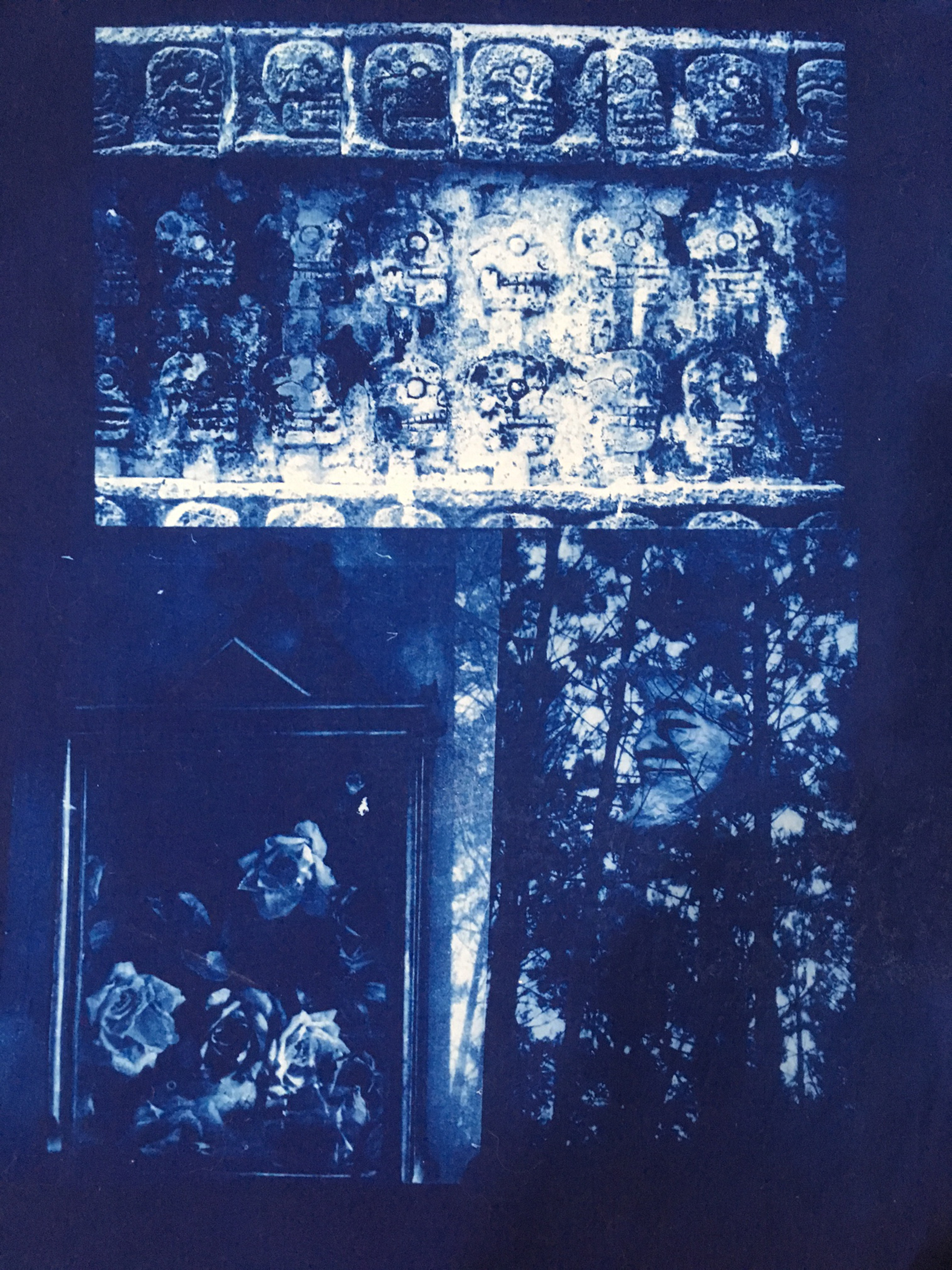 4wVermontAndMaine.cyanotype on cloth.
