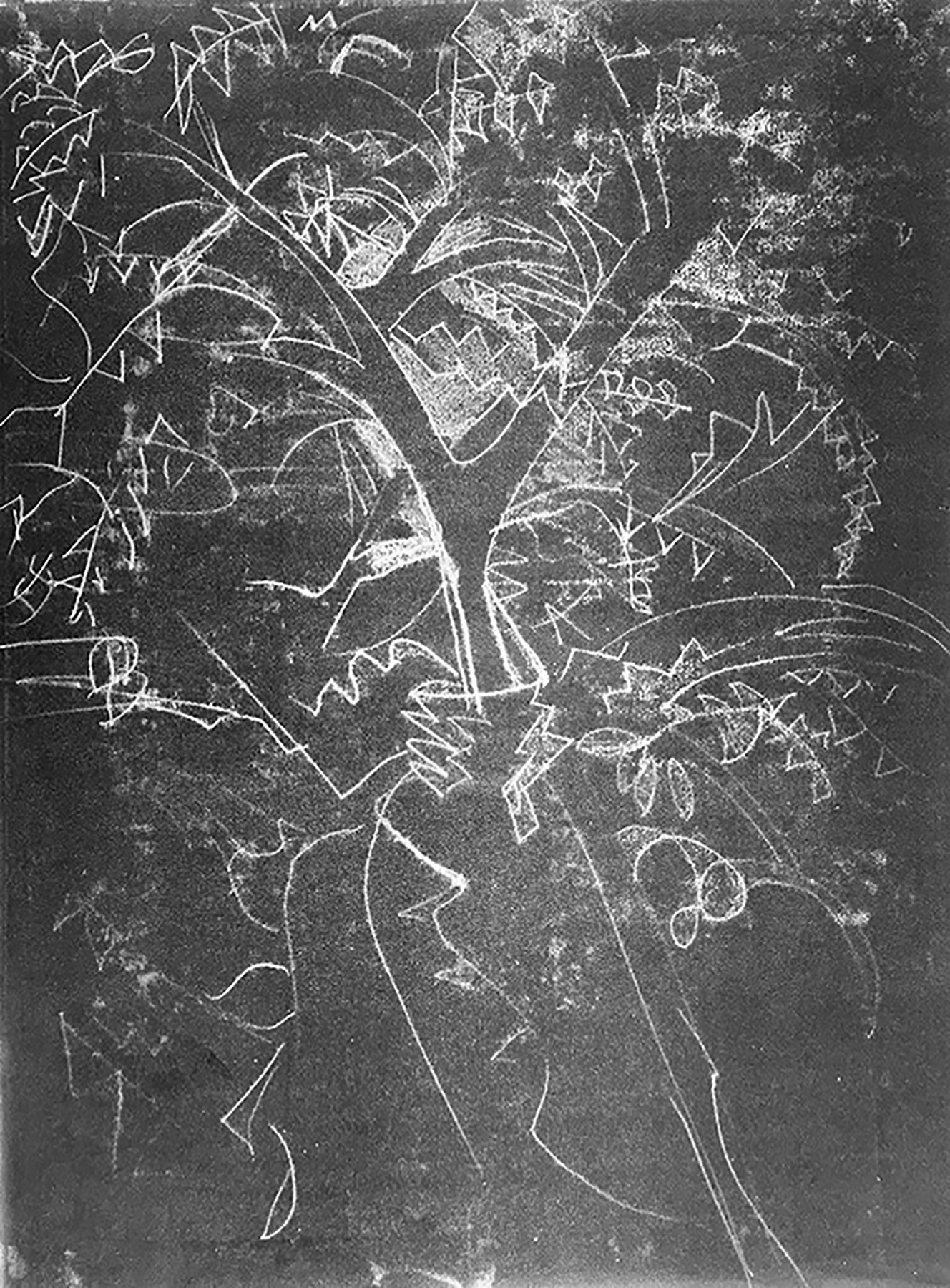 MagicTree.monotype.30_x22_