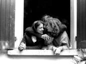 1978 Milano, via Giambellino.jpg