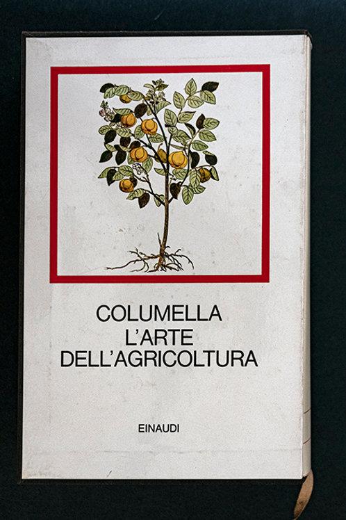 ARB.2772 – Lucio Giugno Moderato Columella
