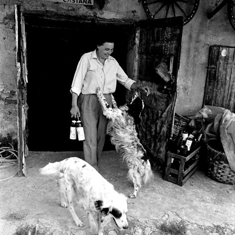 1970 Cantina dell'Oltrepï Pavese.jpg