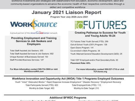 January 2021 Liaison Report