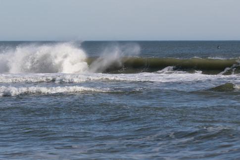 Surfing 03.jpg