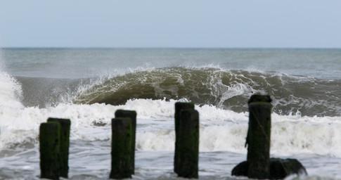 Surfing 39.jpg