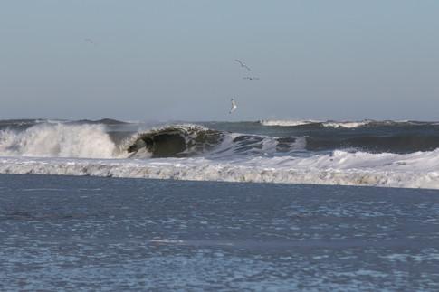 Surfing 30.jpg
