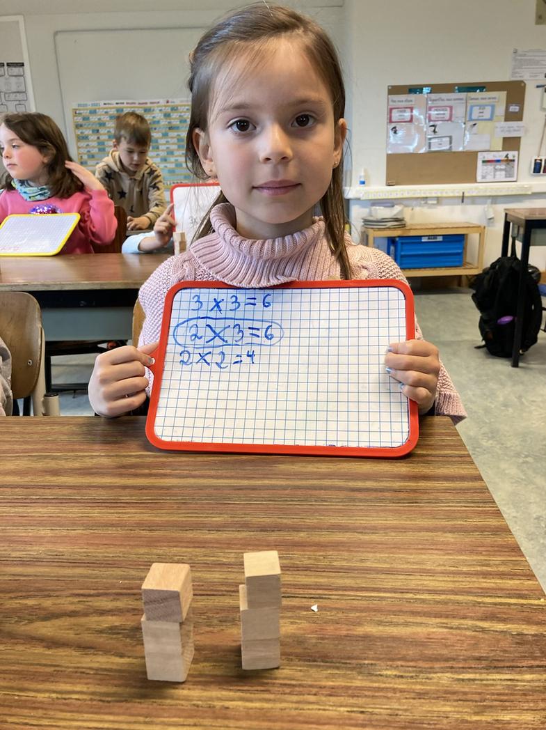 La découverte de la multiplication en P1