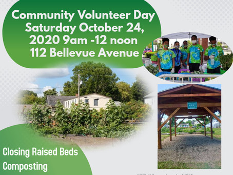 Community Volunteer Day