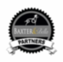 B&B PARTNERS Badge WHITE Background.webp
