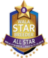 Austin All Star Logo 2019.png