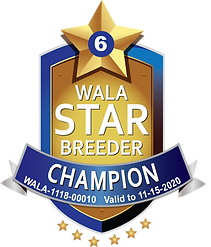 Coastal_Champion Star Logo Final (1).png
