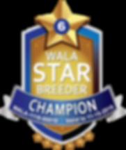 Austin Champion Star Logo 2019.png