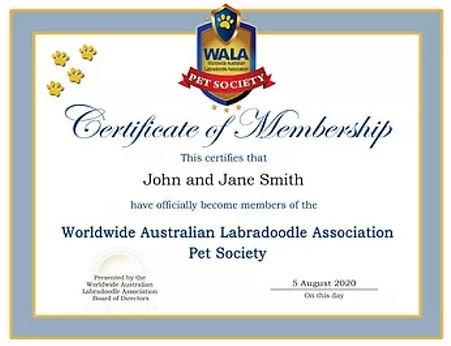 pet-society.jpg