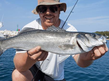 Sea Bass Fishing Guide
