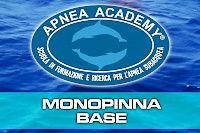 monopinna_base.200x0.jpg