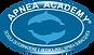 logo_AA_Refl.png