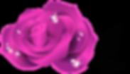 flower_edite-01.png