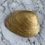 Thumbnail: Gold Sage Shell