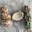 Thumbnail: Coral Reef Sage Shell
