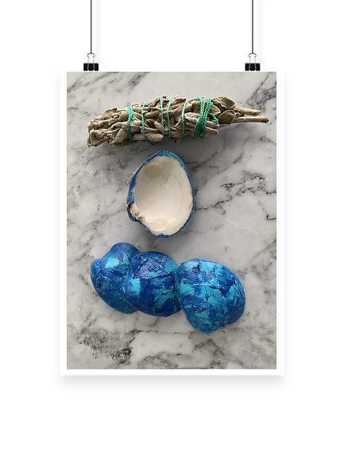 Blue Moon Sage Shell