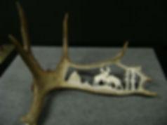 Antler   Moose Fighting 1a.jpg